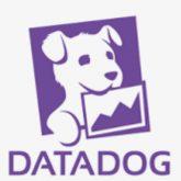 データドッグ(DDOG)計20株買った!